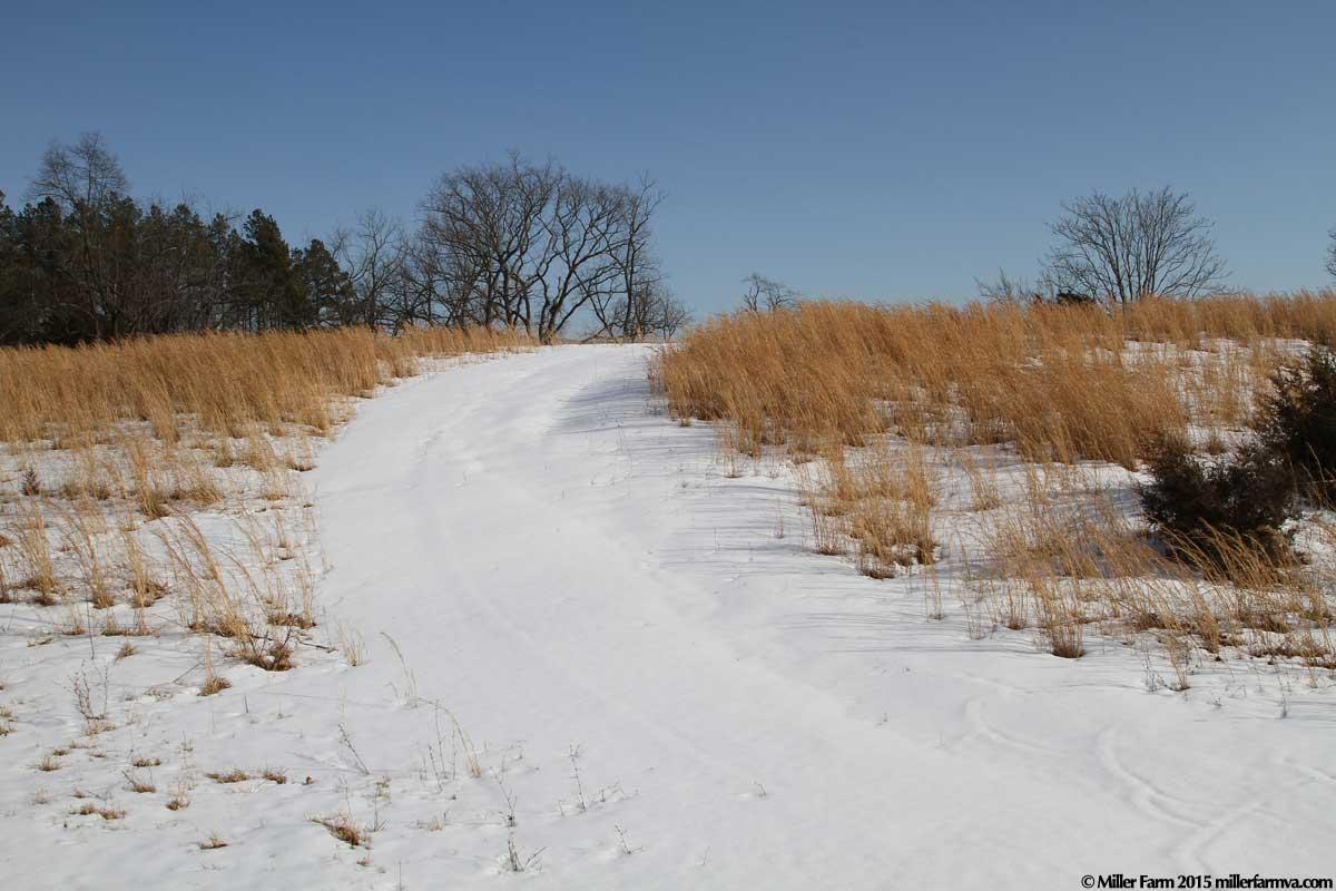 snowfarm2